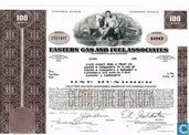 Eastern Gas and Fuel Associates, Certificate for 100 shares, Common stock