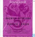 5 Ingwer Zitrone Gewürztee | Ginger Lemon Spice Tea
