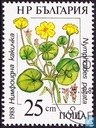 Postzegels - Bulgarije [BGR] - Beschermde waterplanten