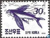 Postage Stamps - North Korea - Fish