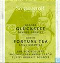 10 Grüner Glückstee Gewürz-Grüntee   Green Fortune Tea Spice-Greentea
