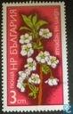 Postage Stamps - Bulgaria [BGR] - Cherry