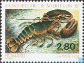 Sea life (Lobster)