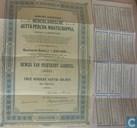Nederlandsche Gutta-Percha Maatschappij, Bewijs van Preferent aandeel, 250 Gulden, 1908