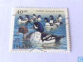 Postzegels - IJsland - Vogels