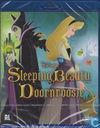 Sleeping Beauty / Doornroosje
