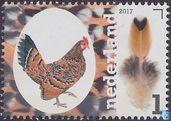 Postzegels - Nederland [NLD] - Nederlandse kippenrassen - Hollands kriel