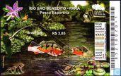 Sao Benedito river