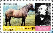 Postzegels - Oman - Dhofar - Cinderella - Paarden