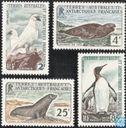Animals of the Antarctic