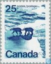 Polar Bears in Canadian North