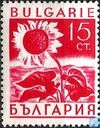 Postage Stamps - Bulgaria [BGR] - Sunflower