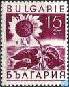 Postage Stamps - Bulgaria [BGR] - Sunflower
