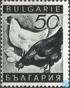 Postage Stamps - Bulgaria [BGR] - Poultry Farming