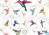 Hummingbirds from St Eustatius