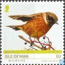 Wildlife & Europa - National birds