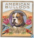 'American Bulldog