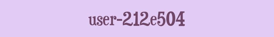 user-212e504
