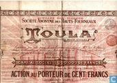 Société Anonyme des Haut-Fourneaux de Toula, Action au Porteur de Cent Francs, 1895