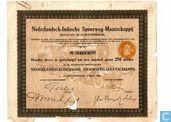Nederlandsch-Indische Spoorwegmaatschappij, Aandeel 250 Gulden, 1920