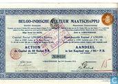 Belgo-Indische Cultuur Maatschappij, Aandeel, 50 Gulden, 1913