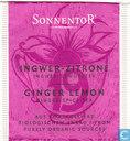 19 INGWER - ZITRONE Ingwer-Gewürztee   GINGER LEMON Ginger-Spice Tea