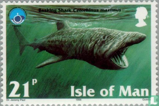 Man - Zeezoogdieren