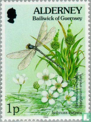 Alderney - Flora en fauna