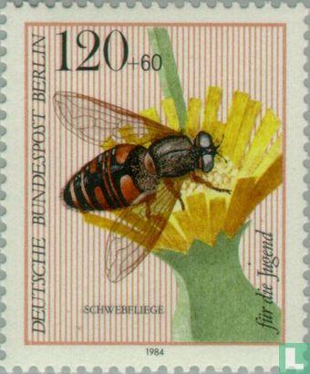 Berlin - Bestäuber-Insekten