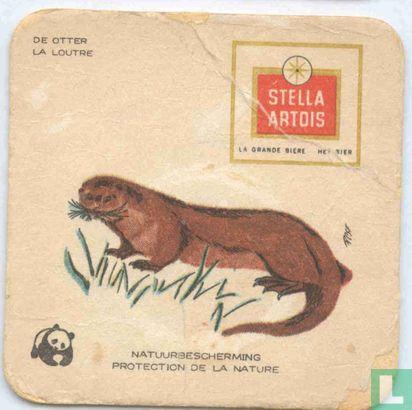 Belgique - Natuurbescherming Zoogdieren : De otter/La loutre