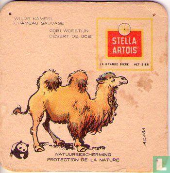 Belgique - Natuurbescherming Zoogdieren : Wilde Kameel / Chameau Sauvage