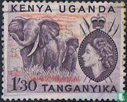 East African Community - Elephants