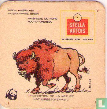 Belgique - Natuurbescherming Zoogdieren : Bison Américain / Amerikaanse Bison