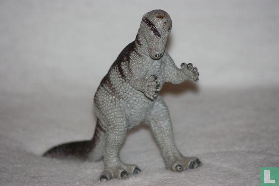 Dinosaurussen - Pachycephalosaurus