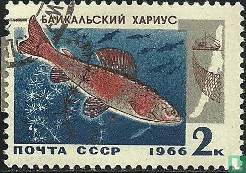 Soviet Union - Fish of Baikal