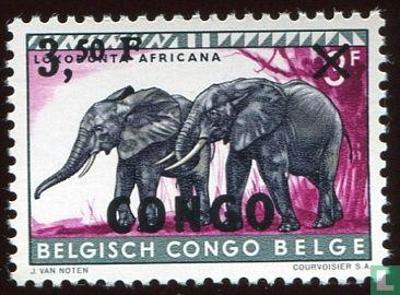 Congo-Kinshasa [COD] (Zaïre) - Dieren