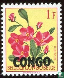 Congo-Kinshasa [COD] (Zaïre) - Flowers