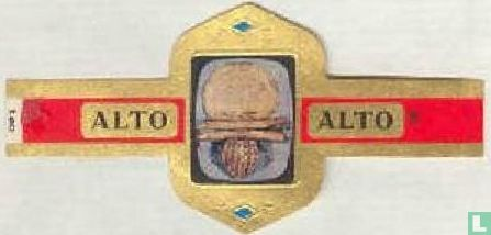 Alto - Gouden broche. Etrurië ± 600 v. Chr.