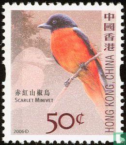 Hong Kong - Birds