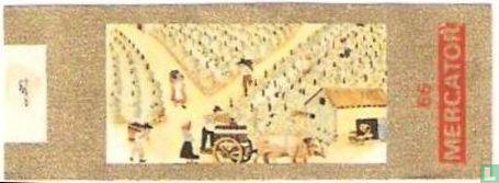 Mercator - Druivenplukkers in Frankrijk