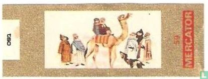 Mercator - Kameeltocht in de Sahara