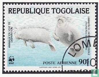 Togo - WWF - Zeekoeien