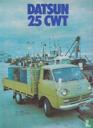 Datsun 25 CWT - Afbeelding 1
