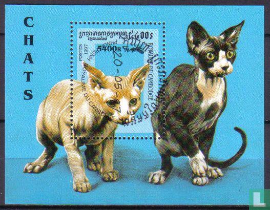 Cambodja - Kattenrassen
