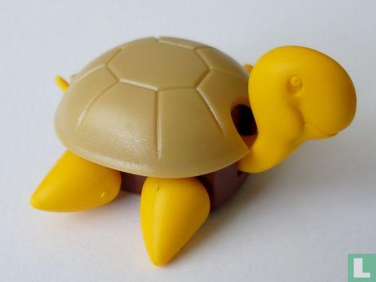 Maraja - Schildpadje op wieltjes