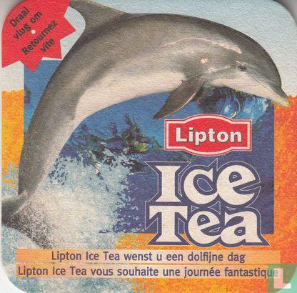 Belgium - Wenst u een dolfijne dag ...