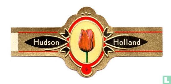 Hudson - Tulpen 6