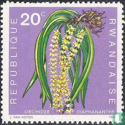 Rwanda - Inheemse flora