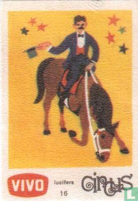 Paardennummer