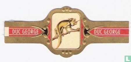 Duc George - Kameleon